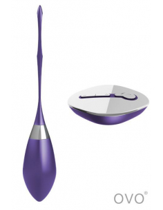 R6 - Oeuf vibrant rechargeable