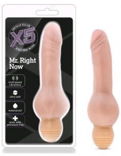Vibromasseur Réaliste Doux et Flexible Mr Right