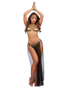 Costume sexy de danseuse Orientale